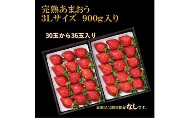 武下さんちのあまおうギフト 3Lサイズ900g入り
