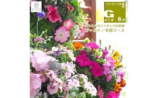 01A-027 「ハンギングバスケット定期便~ゴールド」【6回コース】(半年~1年間お届け)