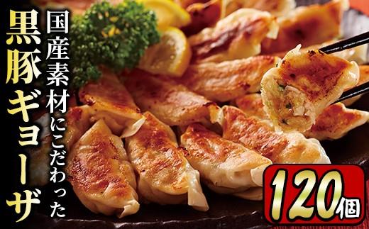 y217 国産素材にこだわった黒豚ギョーザ 計120個(12個入×10P)ジューシーな肉汁あふれる餃子を小分けパックでお届け!便利な冷凍ぎょうざ!【財宝】