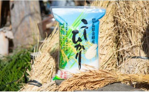 【玄米低温貯蔵】鹿児島県南さつま市産「金峰コシヒカリ」5kg