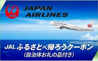 【南大隅町】JALふるさとへ帰ろうクーポン(84,600点分)+ねじめ温泉ネッピー館宿泊チケット(素泊まりプラン)