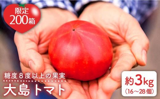 【糖度8度以上】大島トマト3kg<大島造船所農産G> [CCK005]