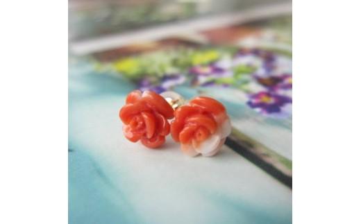 珊瑚職人館の珊瑚のピアス9