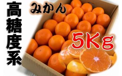 ■高糖度系ブランド!有田みかん約5kg【2020年10月以降発送】
