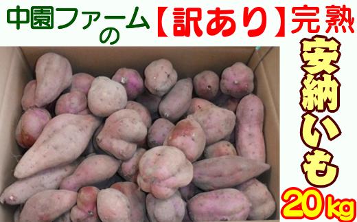 安納地区産の中園ファームの【訳あり】完熟安納芋20kgです。