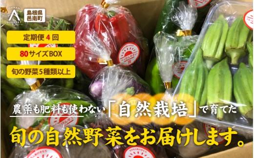 【旬を食べる定期便4回】 自然栽培 旬の健康べっぴんやさいセット80サイズBOX