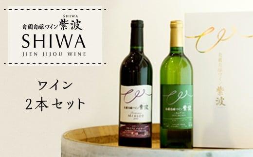 1016ワイン2本セット【自園自醸ワイン紫波】