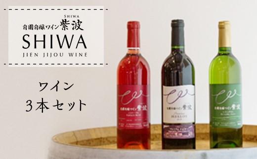 1015ワイン3本セット【自園自醸ワイン紫波】