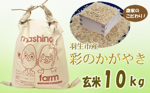 【令和元年産米】埼玉県推奨米 彩のかがやき 玄米10kg