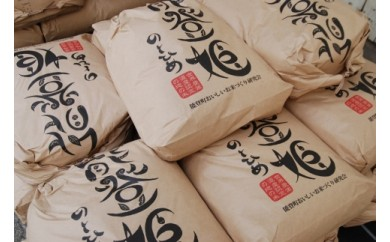 【能登姫】特別栽培米コシヒカリ「玄米」