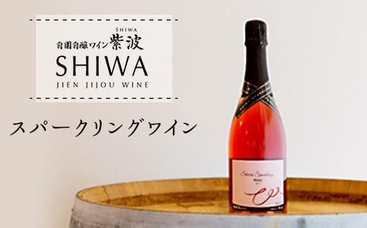 1014スパークリングワイン【自園自醸ワイン紫波】