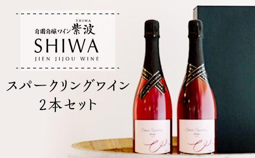1013スパークリングワイン2本セット【自園自醸ワイン紫波】