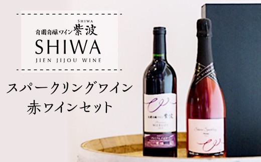 1012スパークリングワイン・赤ワインセット【自園自醸ワイン紫波】