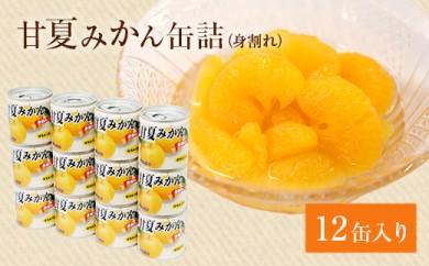 甘夏みかん 缶詰 12缶入り(身割れ)