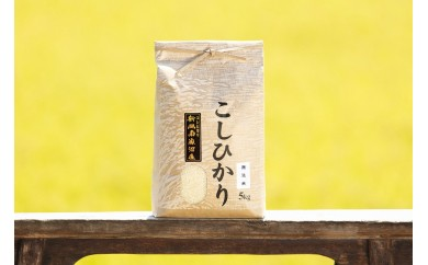 【頒布会】南魚沼産コシヒカリ(無洗米5kg×全12回)