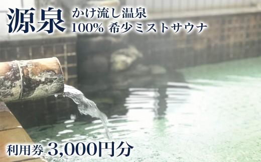 沢内バーデン 利用券 3,000円分