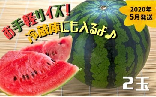 AZ50 玉名産 小玉スイカ【2020年5月発送】