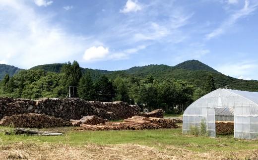 豊かな森を育む西和賀町