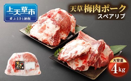 熊本県産 天草梅肉ポーク スペアリブ 大容量 4kg 冷凍