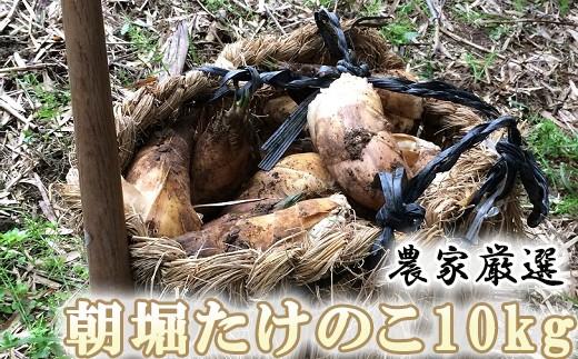 Y03-2 農家厳選「朝堀たけのこ」 10Kg予約