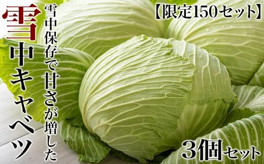 【雪国の限定野菜】雪中キャベツ 3個セット