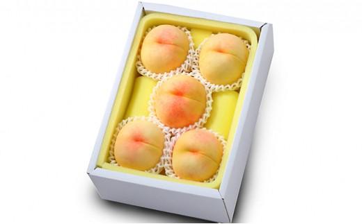 [№5735-0694]●先行予約受付●岡山県産 清水白桃 約1.3kg