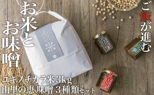 ユキノチカラお米 白米3kgと山里の恵み味噌セット