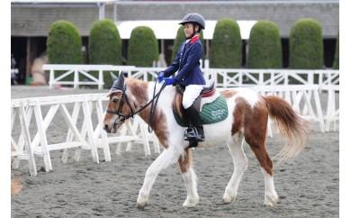 初めてのお子様でも安心!ふれあいも楽しい「ポニー乗馬体験」2回コース