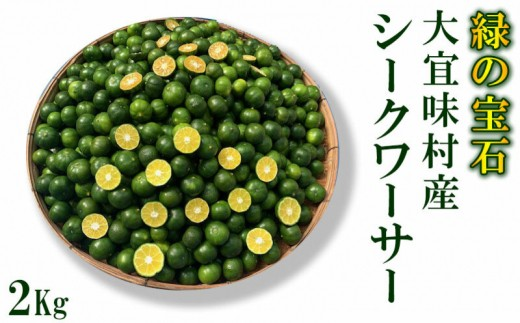青切りシークワーサー《2Kg》【大宜味村 緑の宝石】