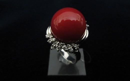 血赤珊瑚丸玉プラチナリングB