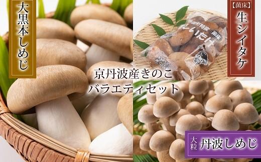 菌床で栽培した京丹波町産きのこバラエティセット [010MK001]