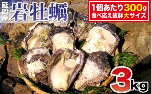 牡蠣 生 食用 食べ 方