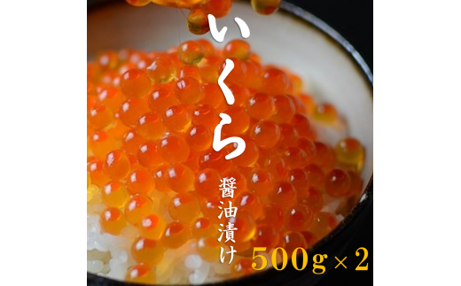 F-135 三陸産 いくら醤油漬け 3特 500g×2(1kg)