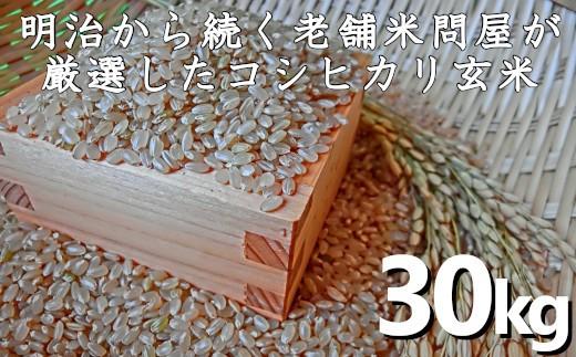 千葉県いすみ米こしひかり玄米30kg C603