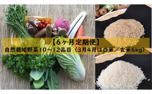 【6ヶ月定期便】自然栽培野菜10~12品目(3月4月は白米または玄米6kg)
