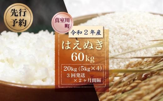 令和2年産米先行予約 真室川町産はえぬき60kg 3回定期便(20kg×2か月間隔で3回発送)