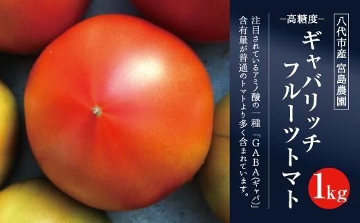 八代市産 宮島農園 ギャバリッチ フルーツトマト 1kg トマト 高糖度