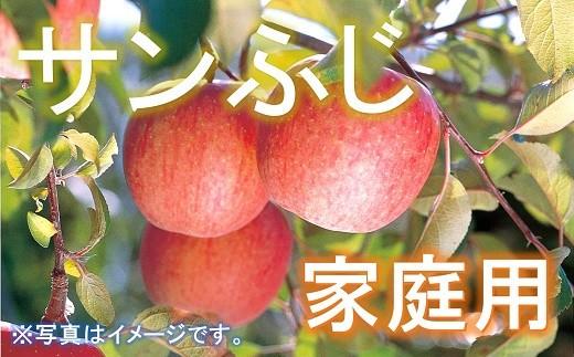 721-R2 【令和2年産】家庭用 りんご サンふじ 約10kg(46玉)
