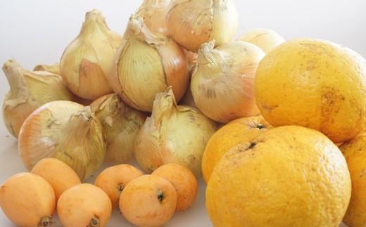 【新たまねぎ】淡路島産たまねぎ5kgと旬の果物少々セット