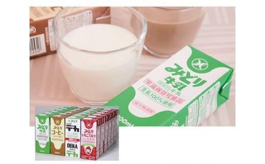 No.828 みどりおすすめドリンクセット / 乳飲料 牛乳 特濃 ジュース いちごミルク コーヒー 珈琲 大分県