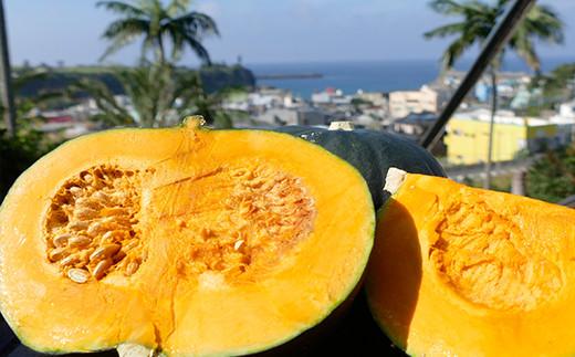 【鹿児島徳之島】限定20個 徳之島産かぼちゃ5kg