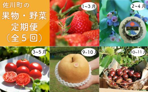 【年5回】さかわのフルーツ・野菜定期便
