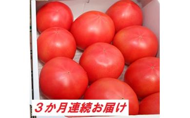 [№5672-0333]【3カ月定期便】甘熟トマト『白岡の太陽』約2kg×3カ月