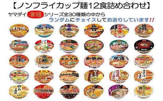 あ-29 ヤマダイ ノンフライカップ麺12食詰め合わせセット