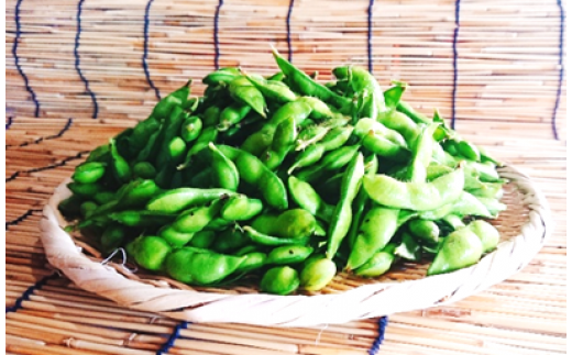 A01-667 殿やの特別栽培 だだちゃ豆2kg 枝豆