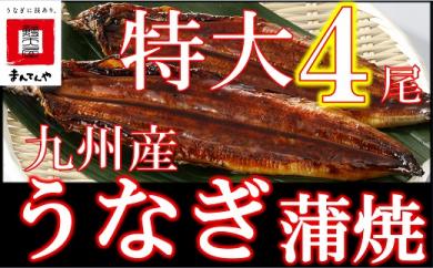 FY04-23 九州産うなぎ蒲焼特大4尾(1尾あたり200~235g)