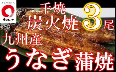 FY08-18 九州産手焼き炭火うなぎ蒲焼3尾(1尾あたり120~149g)