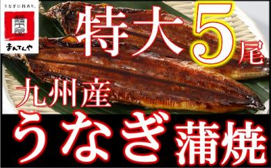 FY05-30 九州産うなぎ蒲焼特大5尾(1尾あたり200~235g)