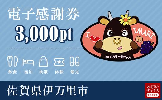 伊万里市電子感謝券 3,000pt(1pt=1円)