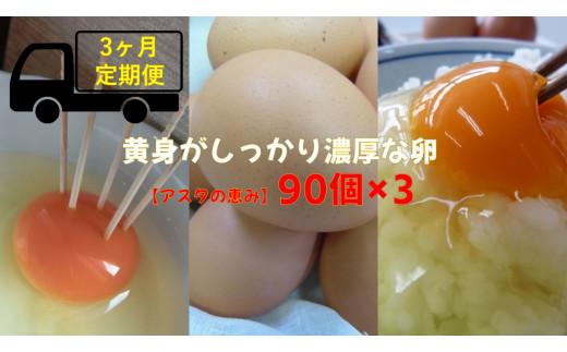 ◆3ヶ月定期便◆ 黄身がしっかり濃厚な卵【アスタの恵み】90個×3